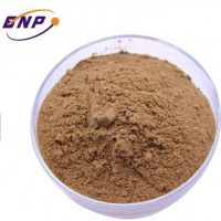 Ginger Root Extract Yellow Light Customized Storage Cool Packaging Food Powder