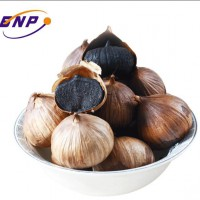 Organic Black Garlic Seeds for Sale With Good Price