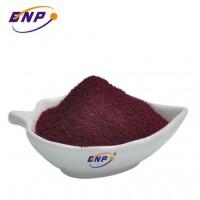 Elderberry Juice Powder to Improve Immunity With Halal Certificate