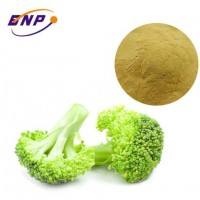 BNP manufacturer supply high quality Broccoli Extract Powder