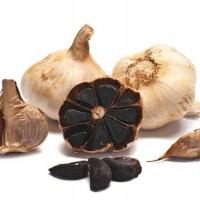 BNP supply high quality Aged Black Garlic
