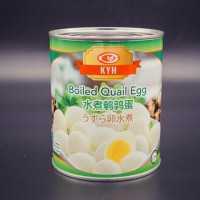 canned quail eggs in brine with competitive price Whatsapp:+86 189 5405 8084